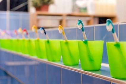 A row of many small green toothbrush cups with many small toothbrushes inside